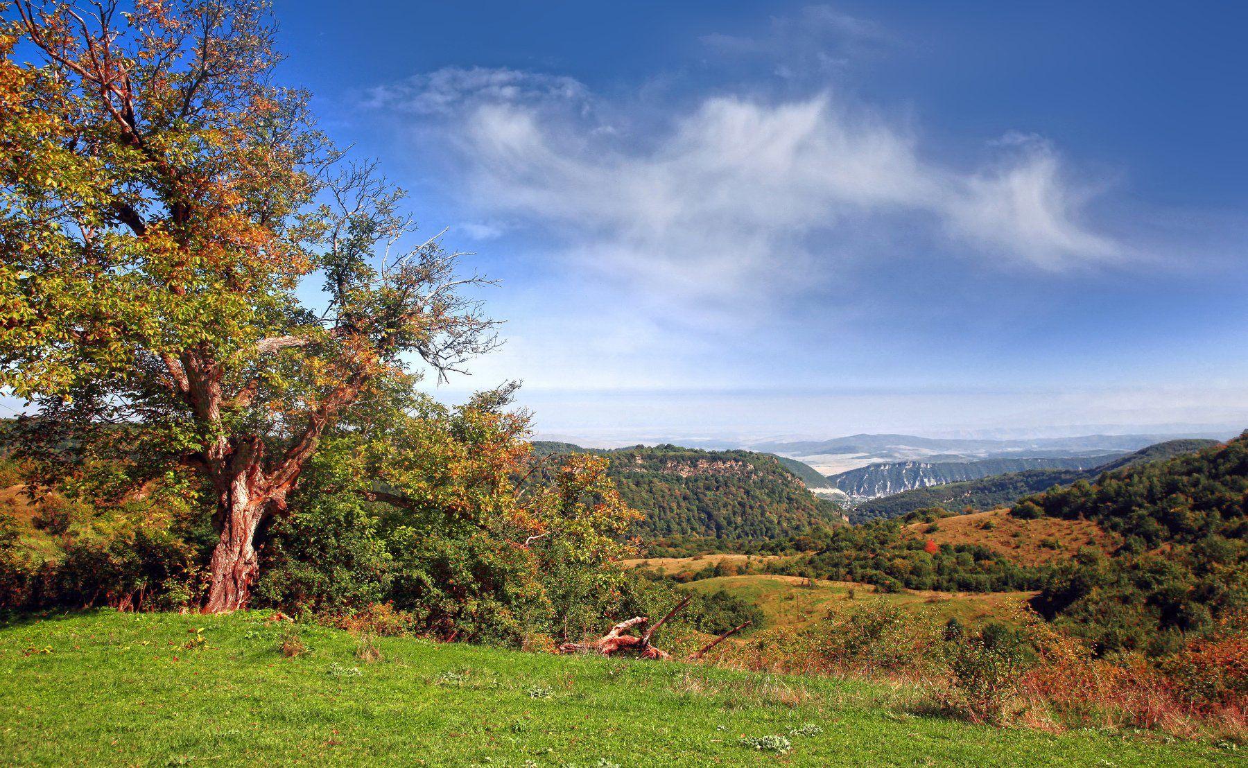 горы,осень,природа,дагестан., Магомедов Мурад