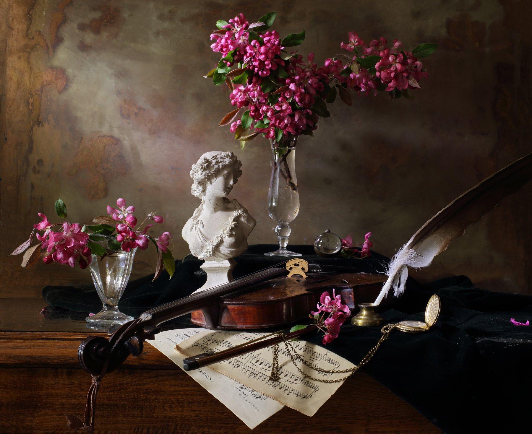 скрипка, музыка, девушка, цветы, весна, натюрморт, Андрей Морозов