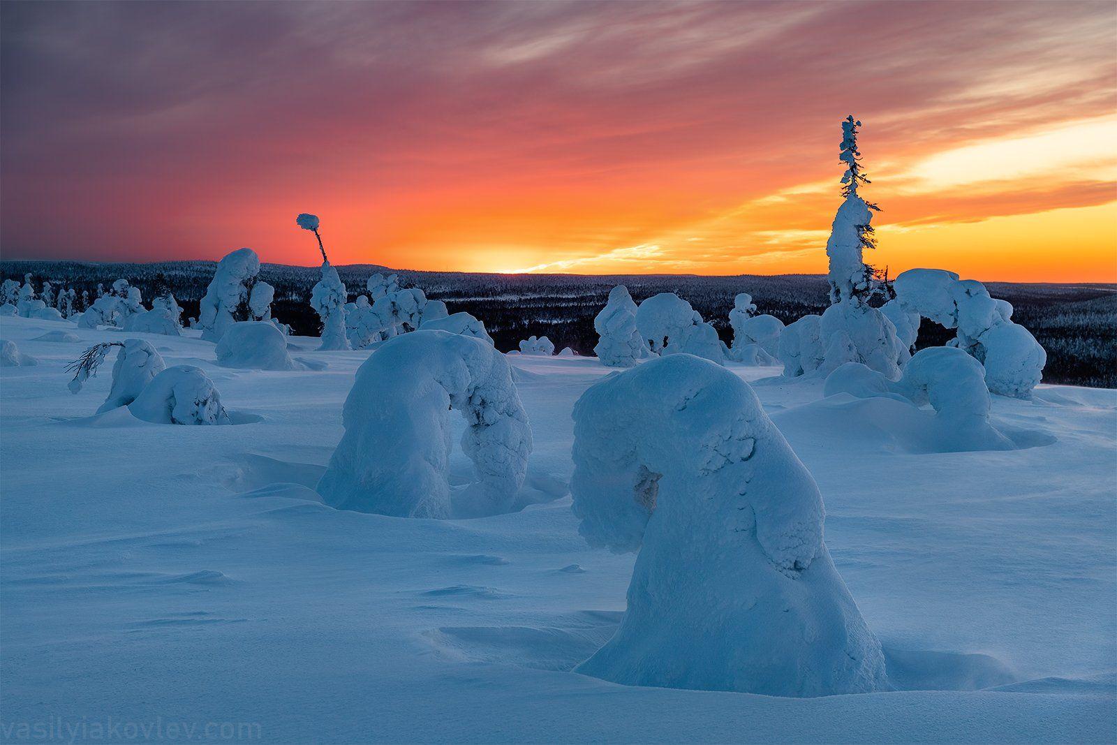 финляндия, лапландия, зима, Василий Яковлев