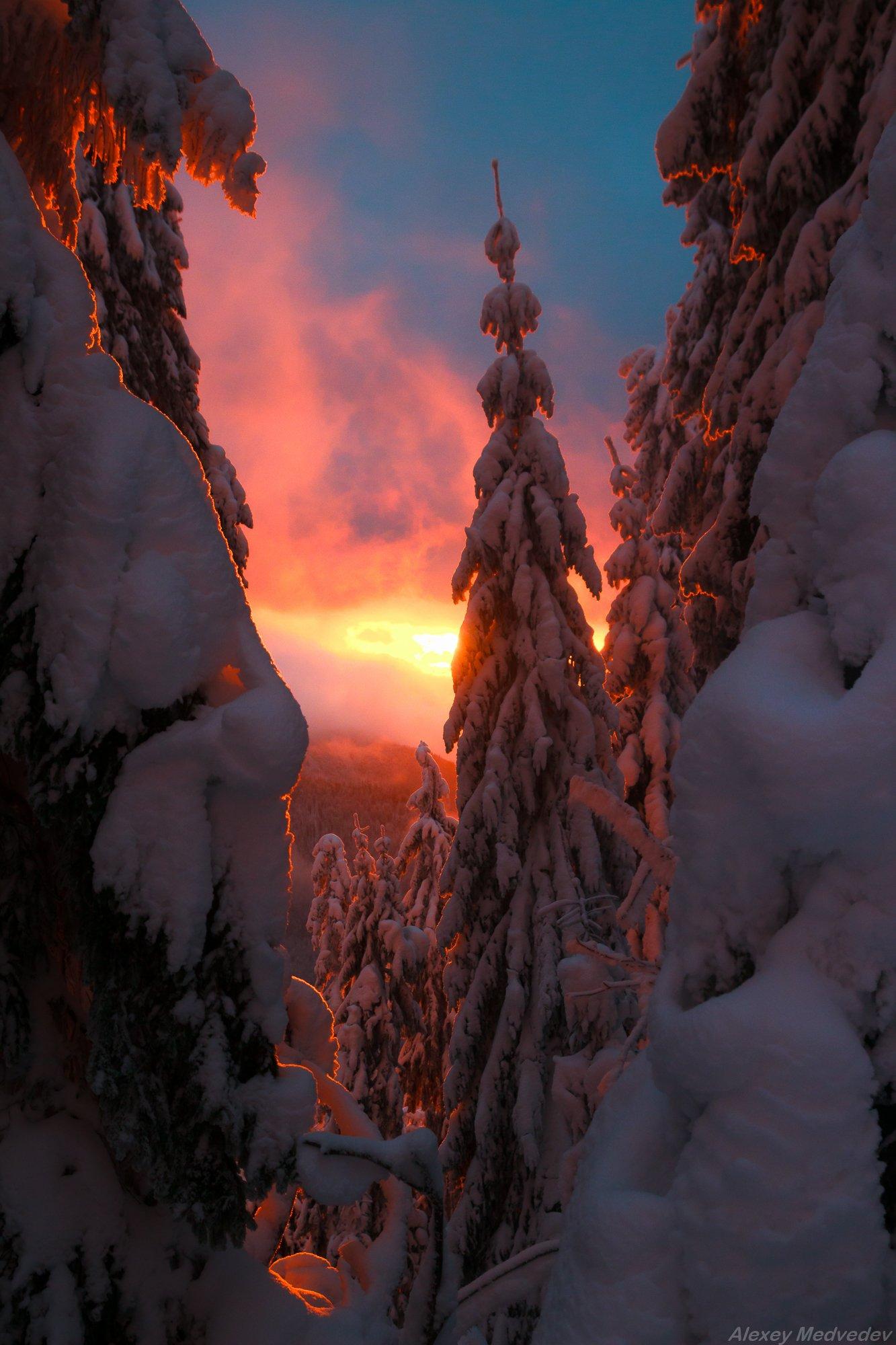 горы, гори, Закарпаття, зима, Карпати, Свидовець, лопухів, лопухов, свидовец, карпаты, закарпатье, свет, закат, солнце, яркий, Алексей Медведев