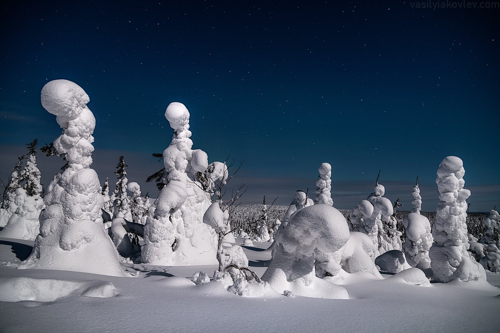 финляндия, лапландия, зима, ночь, Василий Яковлев