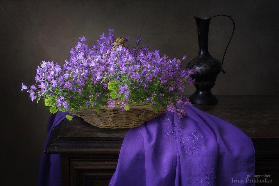 натюрморт, цветочный натюрморт, винтажный натюрморт, цветущая кампанула, Ирина Приходько