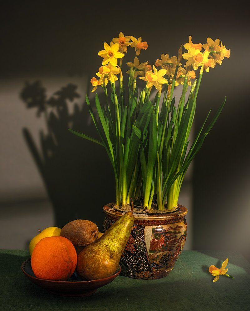 still life, натюрморт,    винтаж,   еда,  фрукты, спелый, вкусный, цветы, нарцисс, свет,  тень,, Шерман Михаил