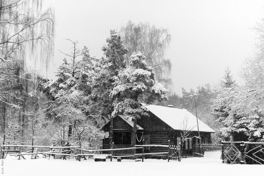 парк, лосиный, остров, изба, зима, снегопад, Alexander Martynov