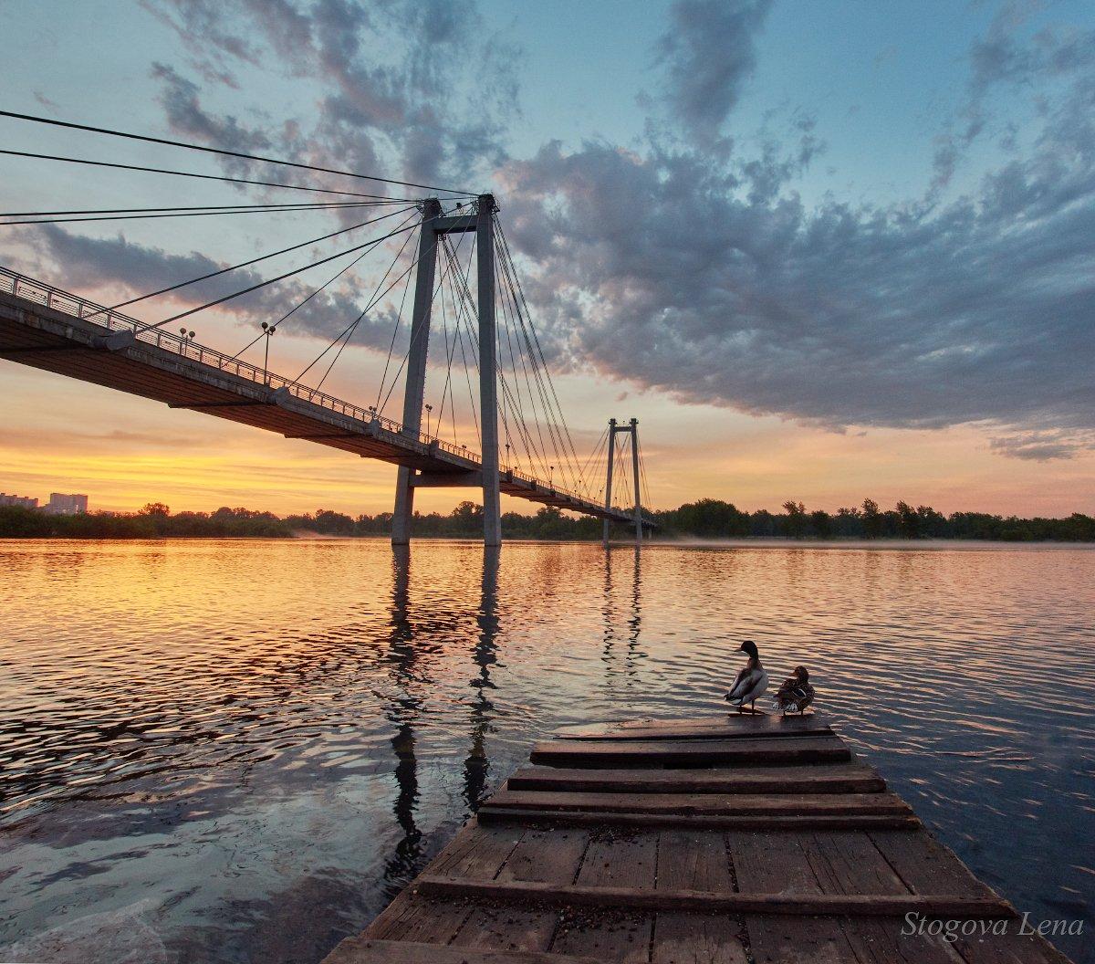 рассвет, мост, Лена Стогова
