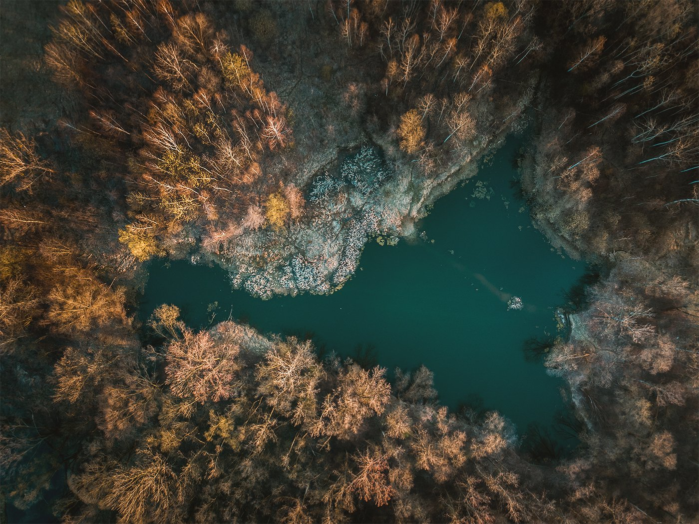 landscape,, dji mavic pro, trees, pond, lake, Fichna Adam