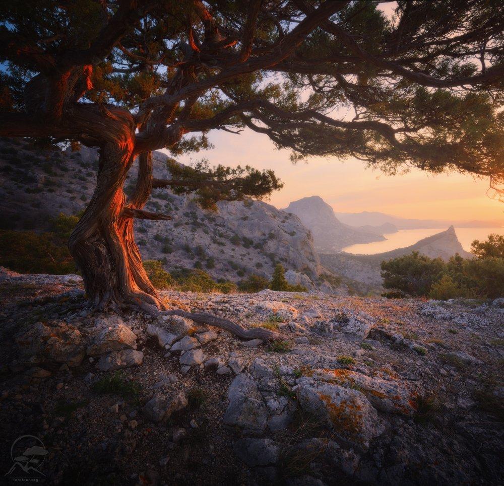 пейзаж, природа, море, крым, утро, Гордиенко Анатолий
