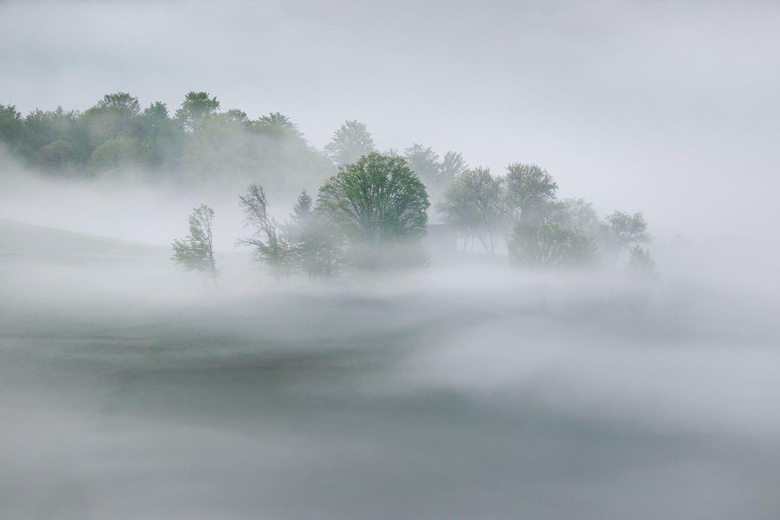mountain, summer, landscape, travel, nature, romania, colors, holbav, fog, sunrise, myst, light, Lazar Ioan Ovidiu