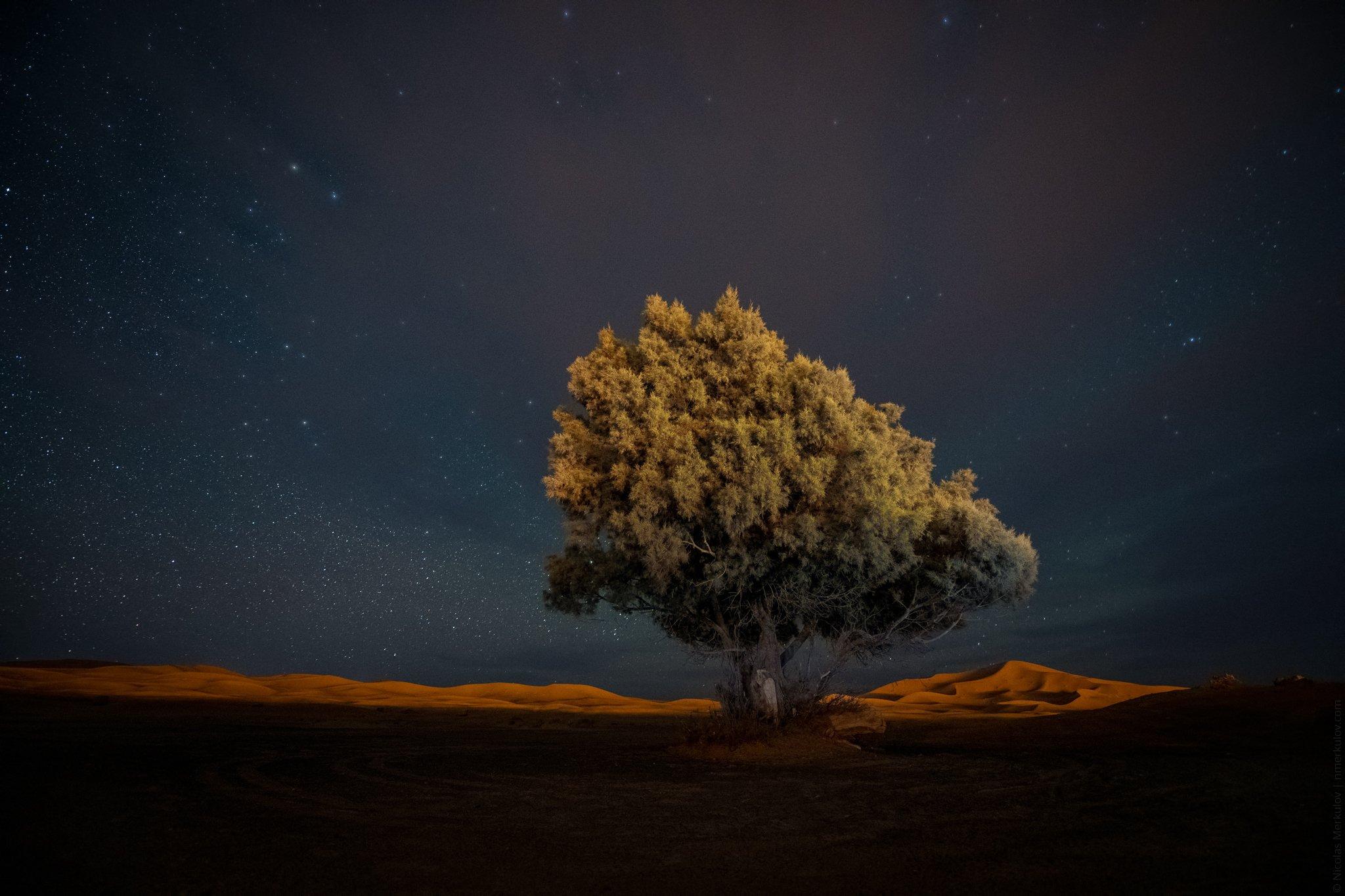 morocco, марокко, africa, африка, sahara, сахара, desert, пустыня, night, ночь, nightscape, landscape, пейзаж, stars, звезды, travel, тревел, Николай Меркулов