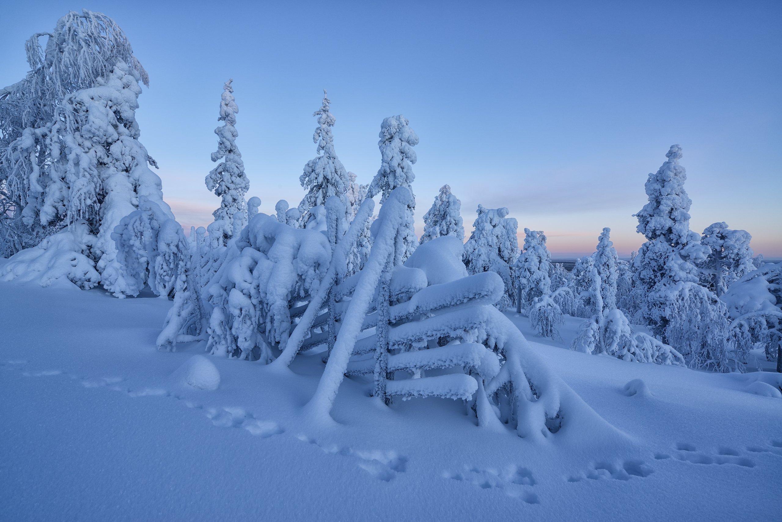 В 2020 приглашаю сюда на Рождество. Обращайтесь <a href=, Максим Евдокимов (phototourtravel.ru)