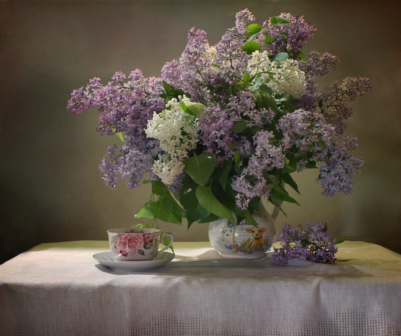 натюрморт, весна, цветы, сирень, фарфор, Ковалева Светлана