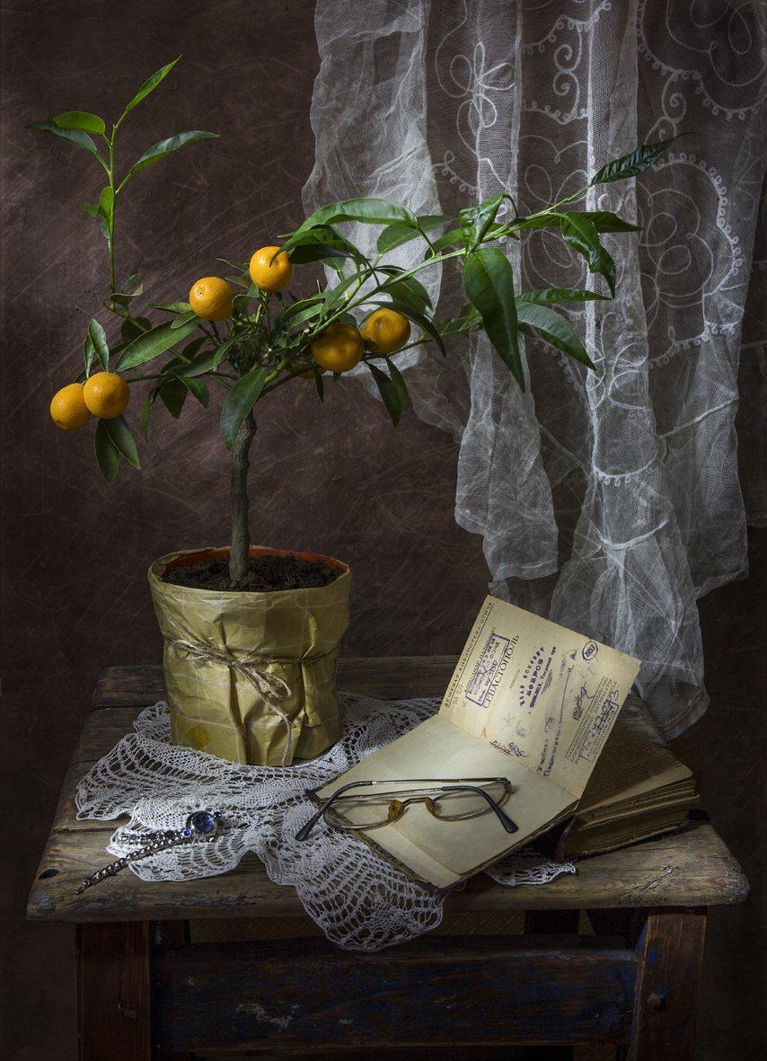 натюрморт,весна,книга,лимон,, Zadorina Svetlana