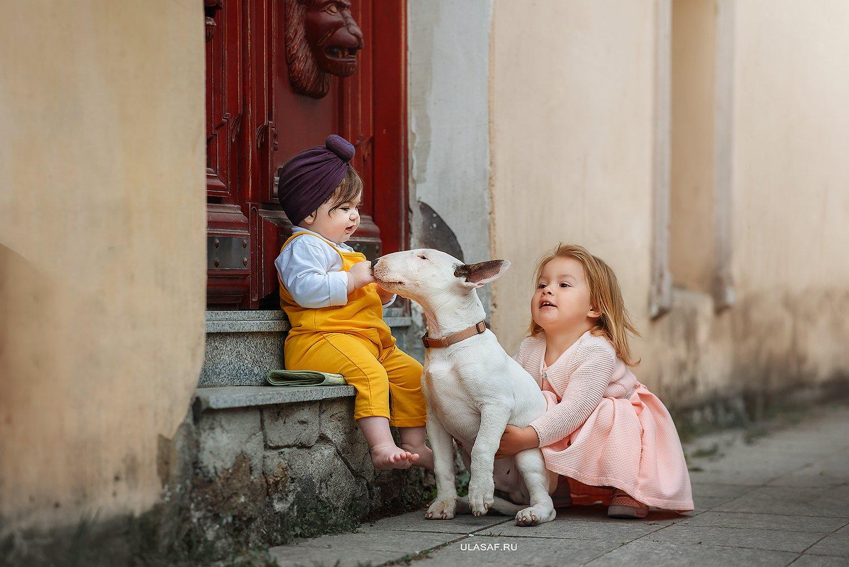 грузия, georgia, тбилиси, tbilisi, портрет, весна, spring, ребенок, дети, прогулка, девочка, girl, животное, собака, dog, фото дети, детские фотографии, радость, малыш, друзья, happy, фотопрогулка, любовь, love, бультерьер, лабрадор, Юлия Сафо