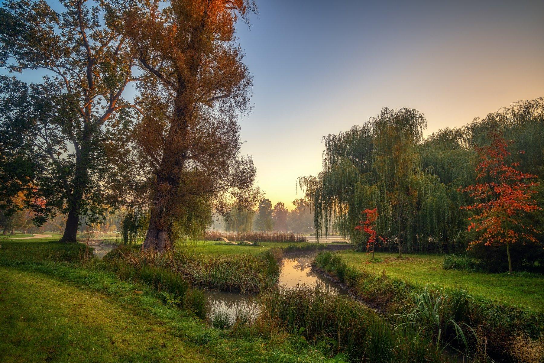 природа пейзаж вода туман утро рассвет осень небо солнце деревья отражения озеро парк, Ожерельев Андрей