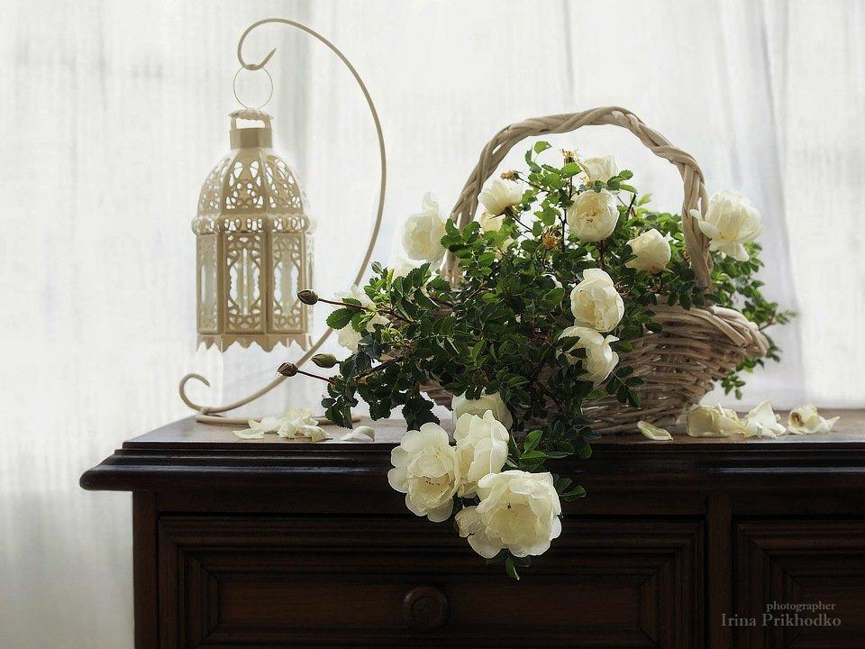 натюрморт, нежность, весна, розы, цветы, интерьер, Ирина Приходько