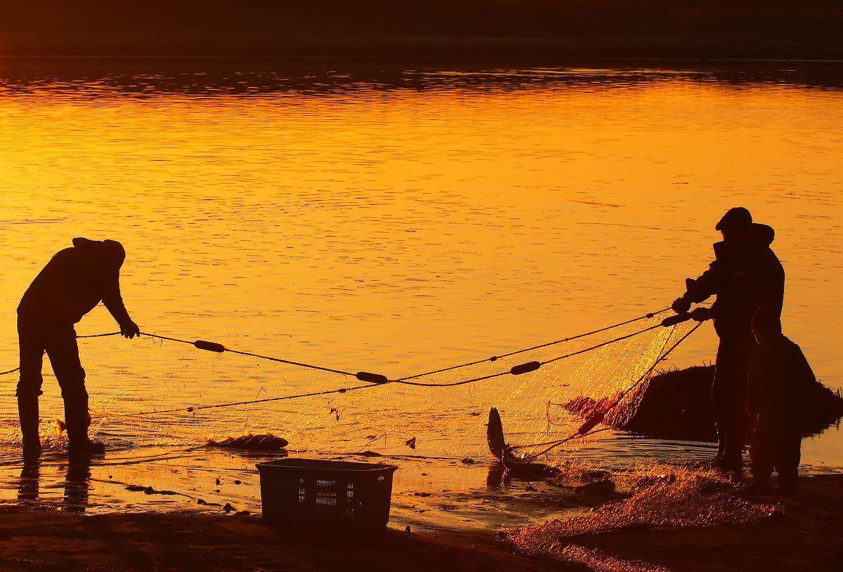 река, лосось, вечер, остров беринга, Utkin  Dmitriy