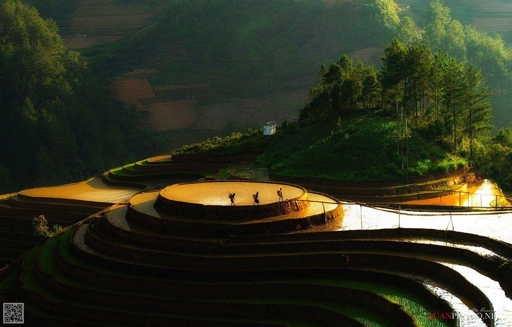 quanphoto, landscape, sunlight, mountains, ethnic, people, farmers, terraces, paddy, farmland, agriculture, culture, rural, vietnam, quanphoto