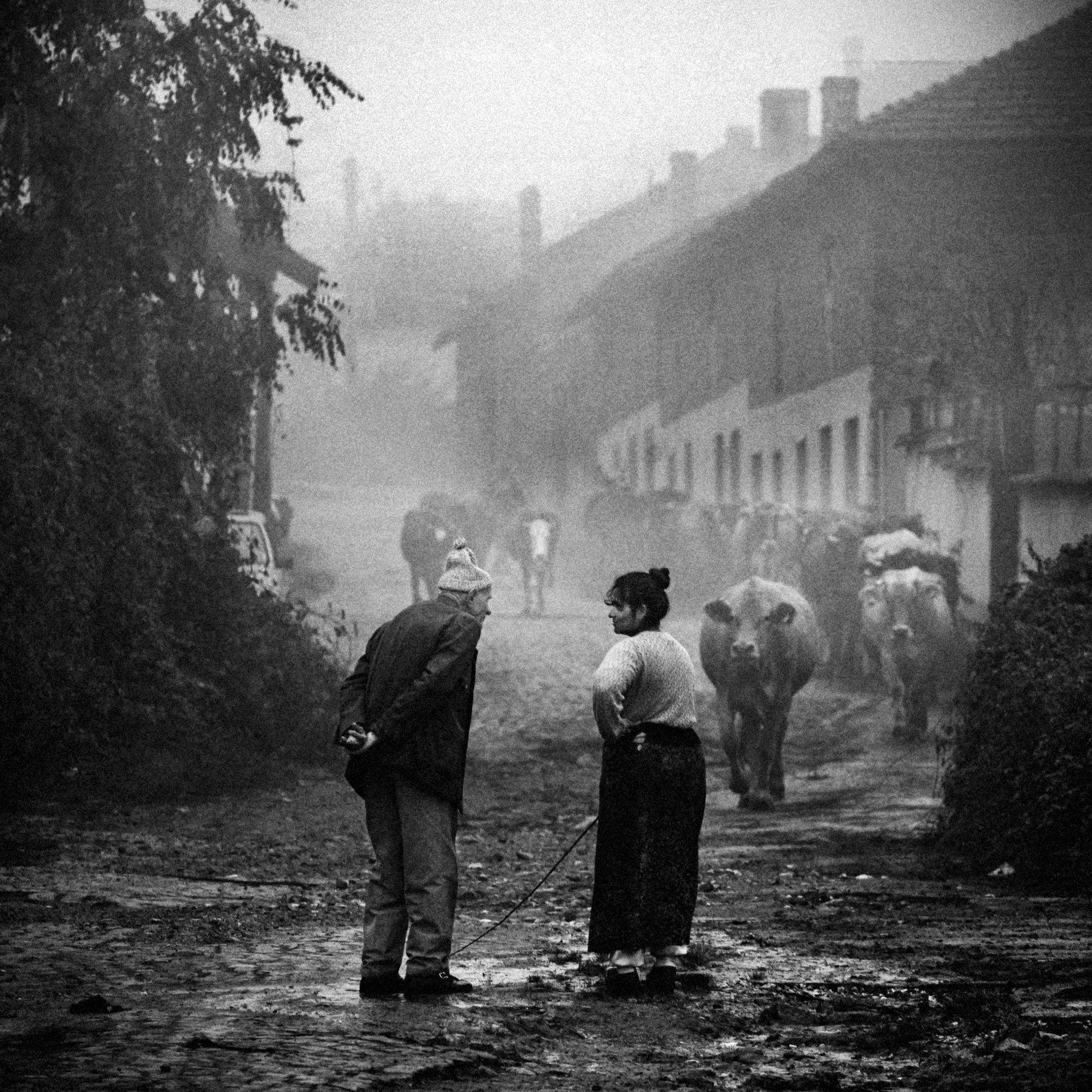 composition, bw, photoshop, street, чб, композиция, Denis Buchel (Денис Бучель)