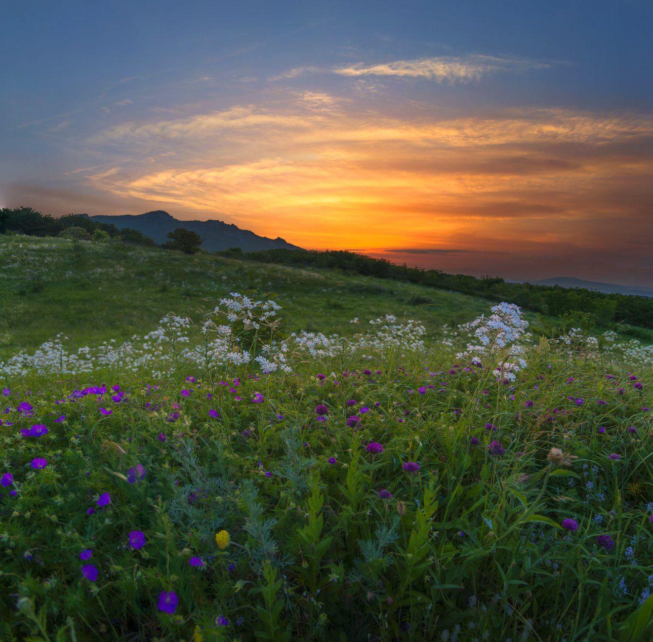 Рассвет на горе Бештау.  Елена Брежицкая