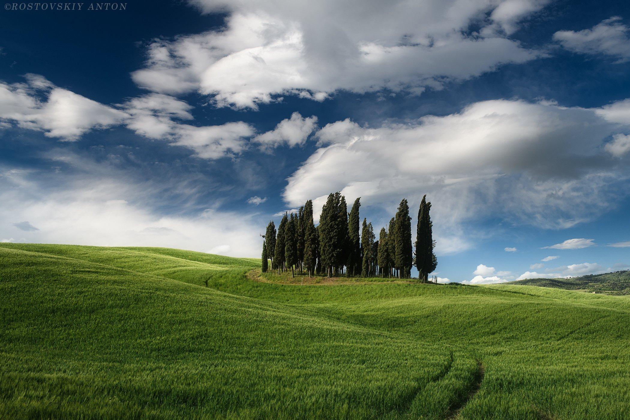 Тоскана, фототур, кипарисы, облака, Италия, зелень,, Ростовский Антон