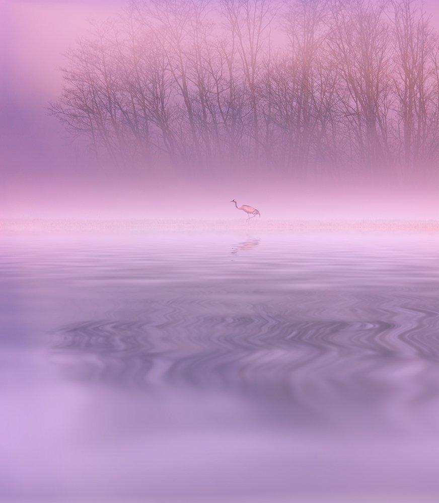 башкирия, инзер, пейзаж, журавль, болото, лягушка, река, рассвет, Konstantin Mironov