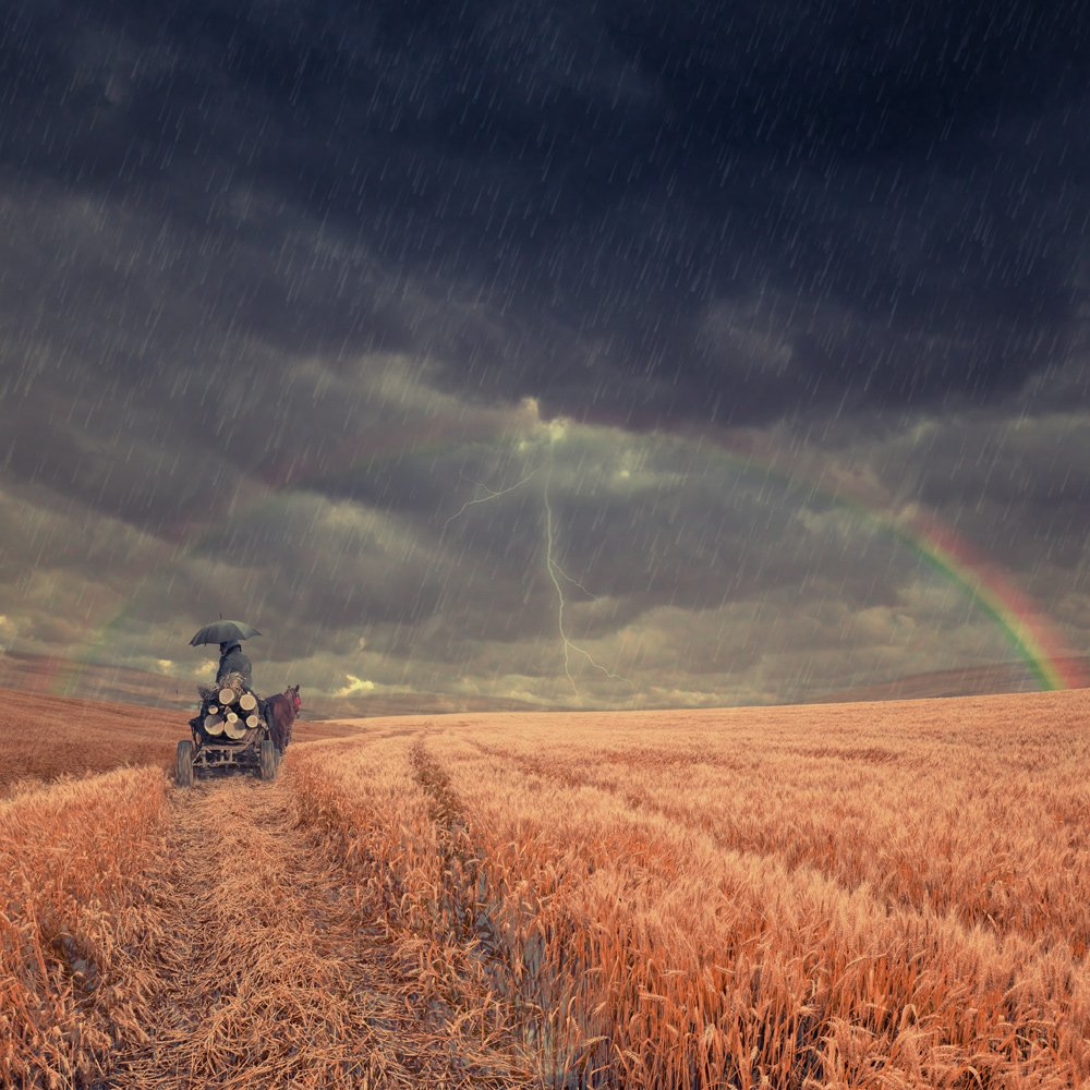 sky, rainbow, umbrella, water, travel, clouds, rain, woman, man, wheat, mounting, lighting, journey, cart, Caras Ionut