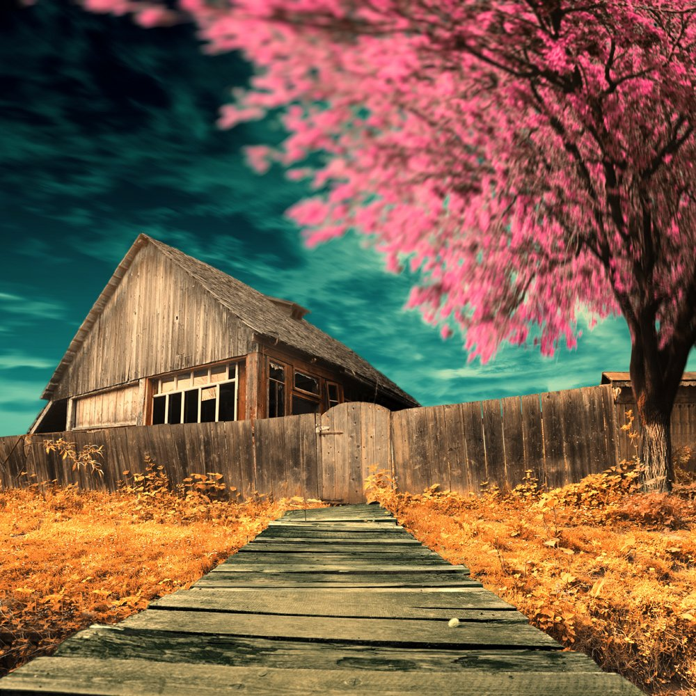 house, tree, fence, old, ir, Caras Ionut