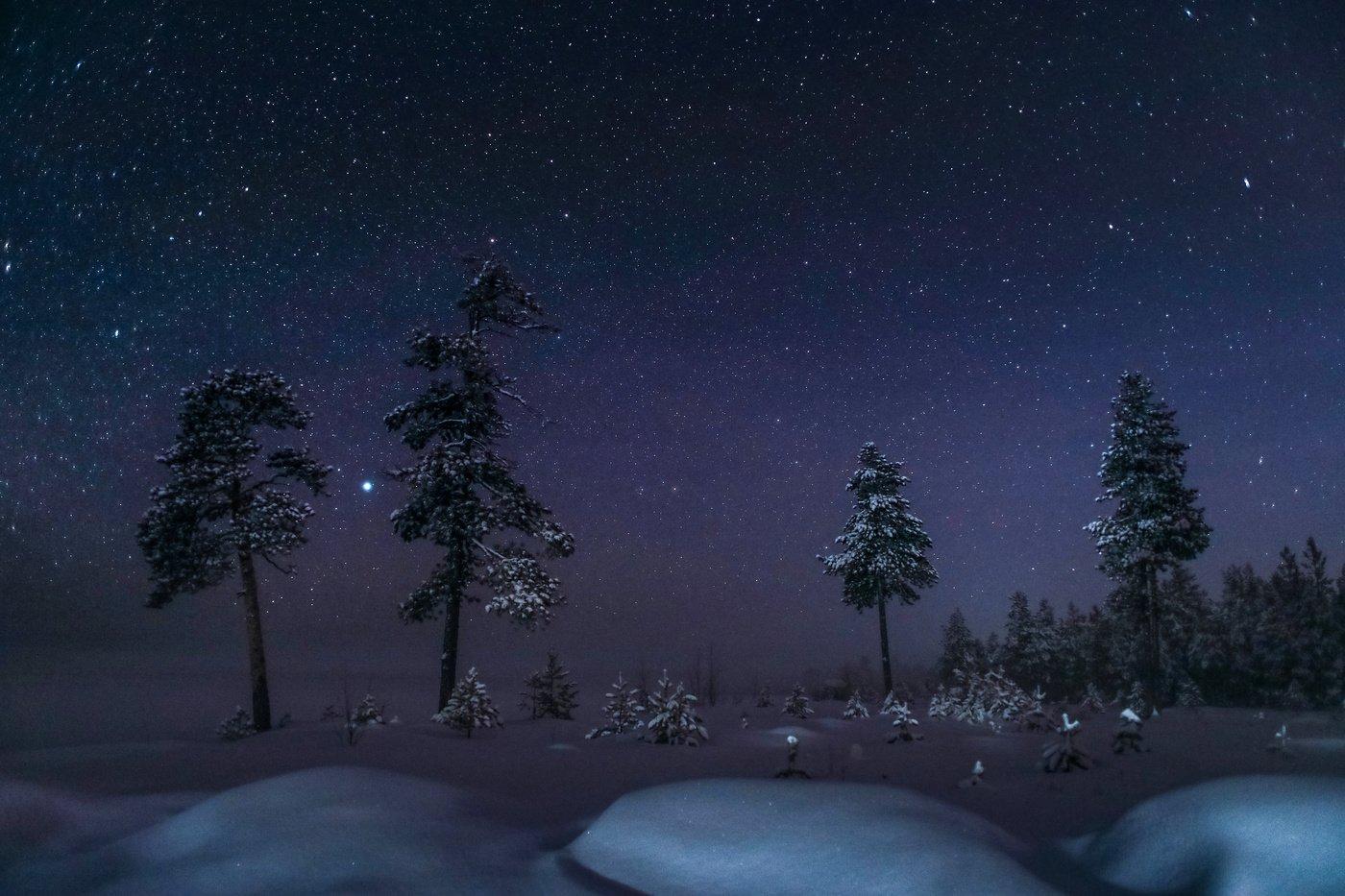 Югра, Север, Ночь, зима, Звезды, красиво,, Татьяна Борисова