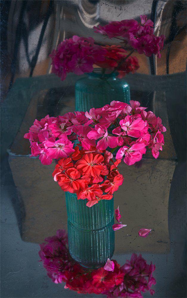 still life, натюрморт,    винтаж,    цветы,  герань, букет, отражение,, Шерман Михаил