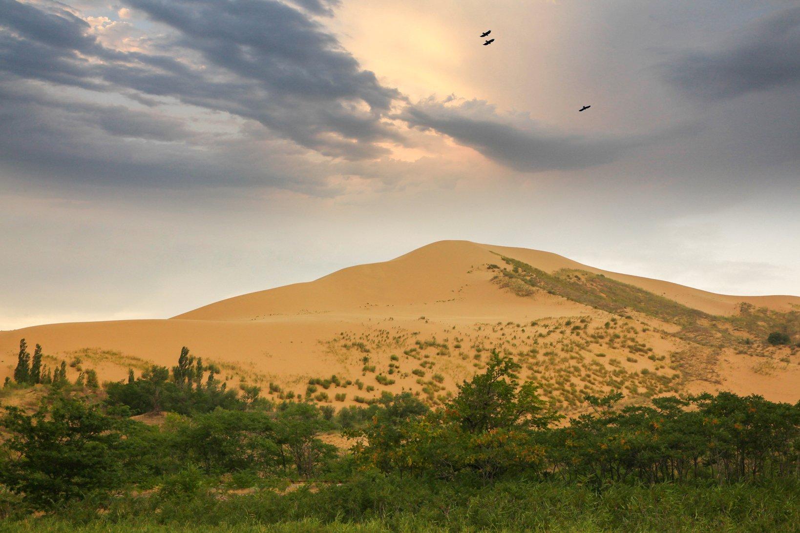 сары кум,песок,гора.природа,пустыня,дагестан., Magov Marat