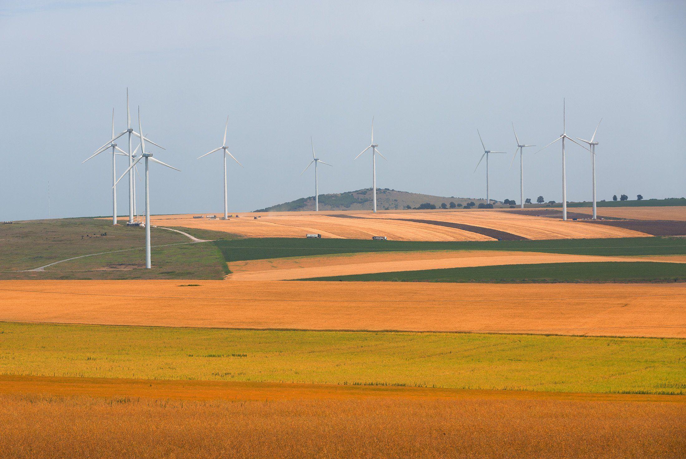 ветряки, ветрогенераторы, поле, пейзаж, Палагичев Алексей