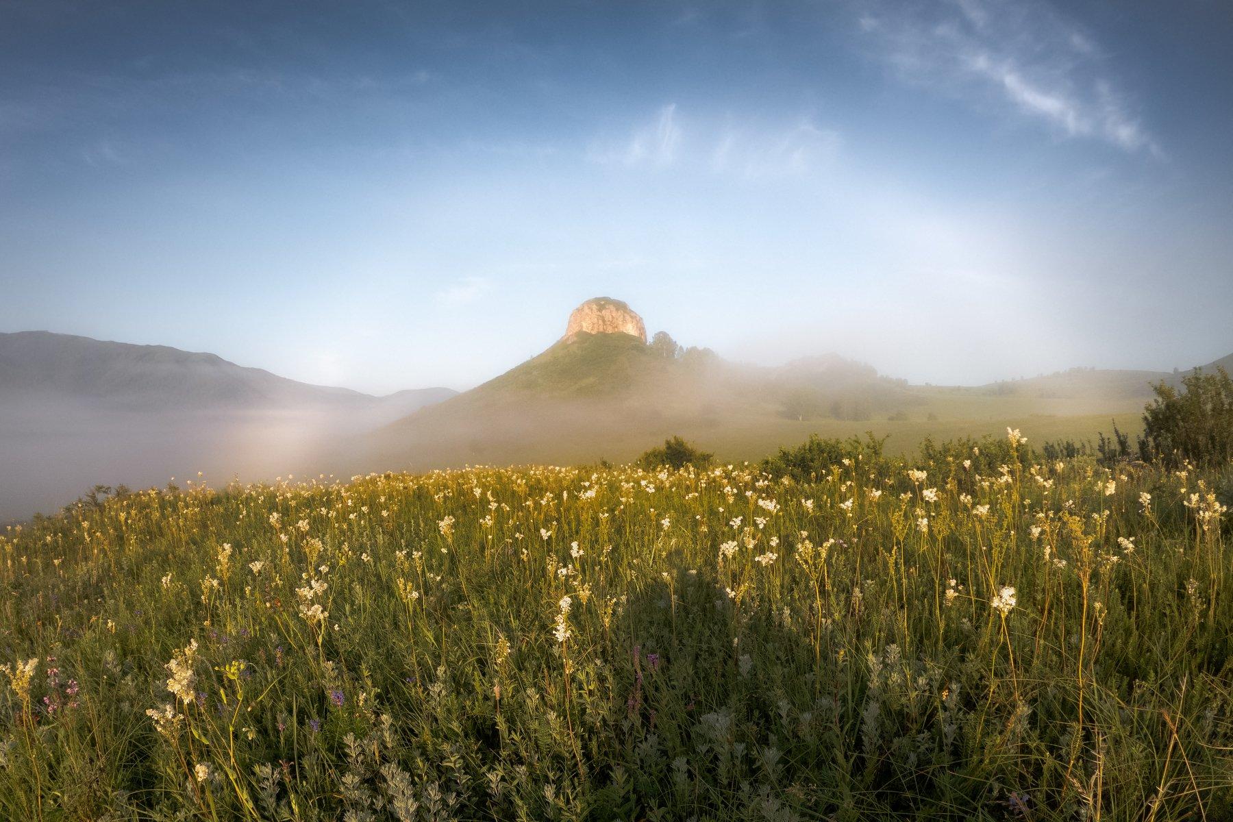 #тропалаксмана #тропаэрикалаксмана #тигирекскийзаповедник #алтай #западныйалтай #тропа #gopro #goprohero7 #goprohero7blackedition #гало #halo #mountain #hill #landscape #morning, Денис Соломахин
