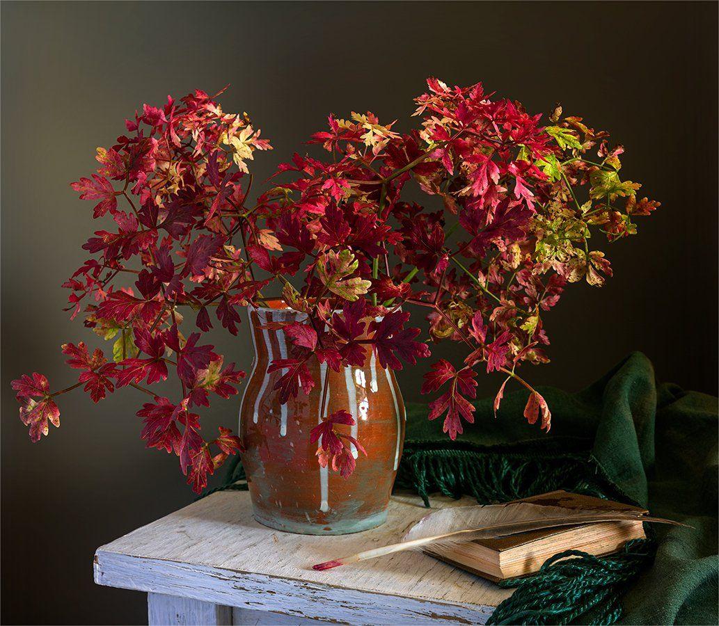 still life, натюрморт,    винтаж,   ретро, ветка, листья, красный, перо птицы, книга, ваза,, Шерман Михаил