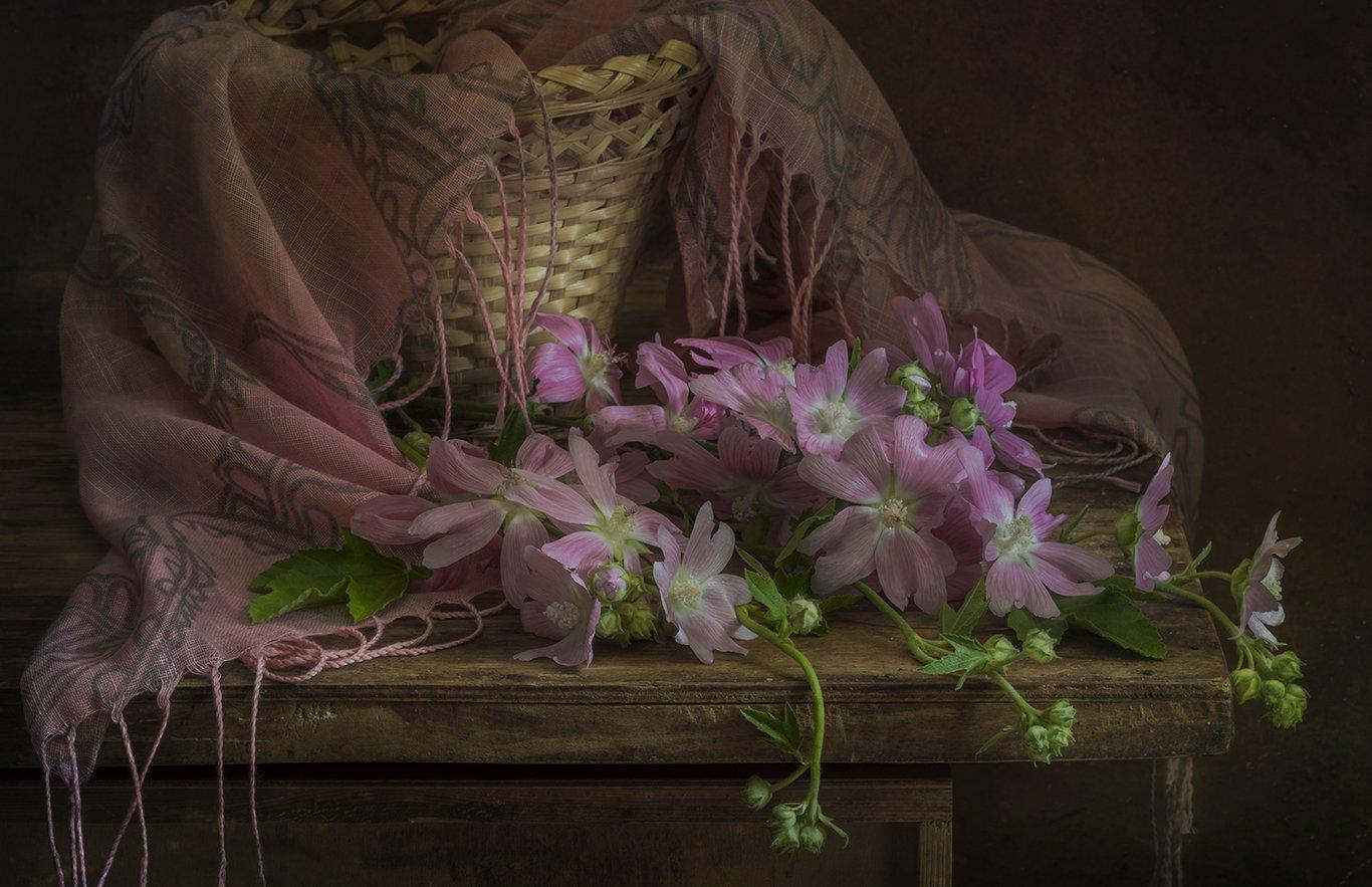 лето,цветы,алтей,мальва, Елена Рубинская