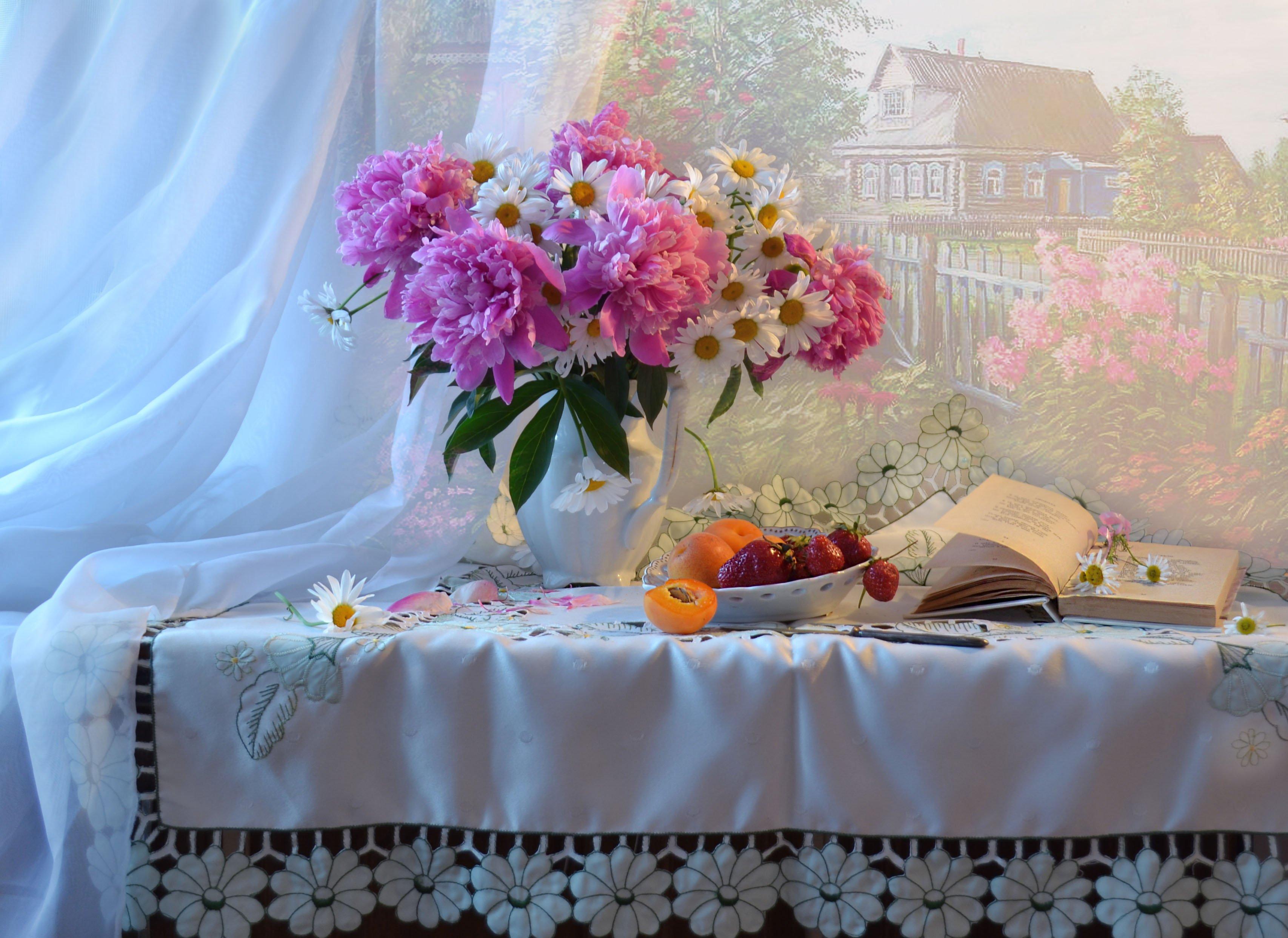 still life, натюрморт,цветы, фото натюрморт, ромашки, пионы, лето, книга, клубника, август, абрикосы, Колова Валентина