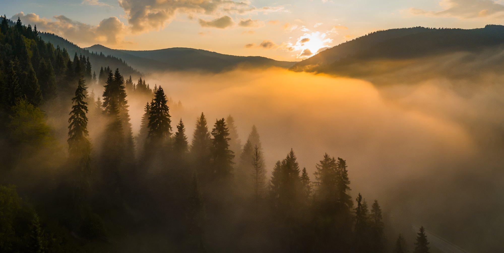 карпаты, туман, рассвет, Антон Петрусь