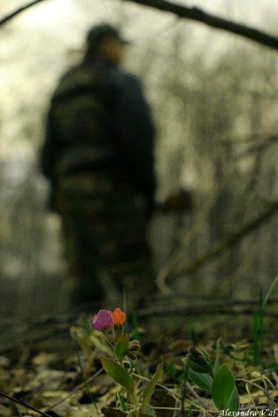 охота, ружьё, цветы, весна, сезон, Саша Вяль
