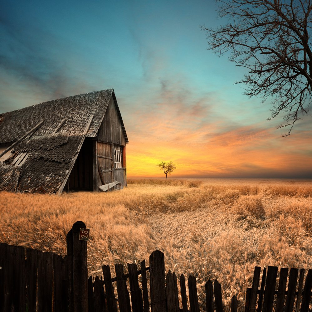 sky, sunset, clouds, house, old, tree, beautiful, shadow, grass, alone, fence, wheat, toned, abandoned, lost, grain, Caras Ionut
