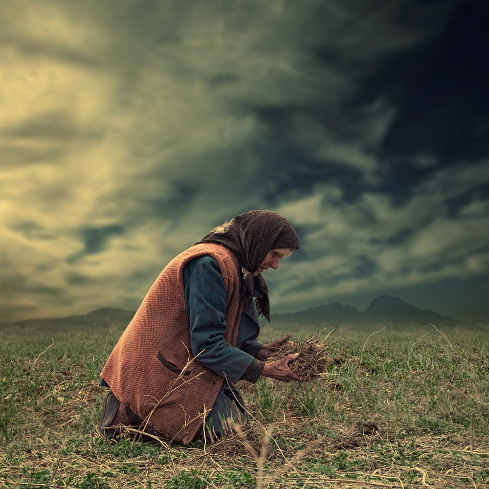 sky, hands, clouds, old, grass, woman, green, ground, worker, Caras Ionut