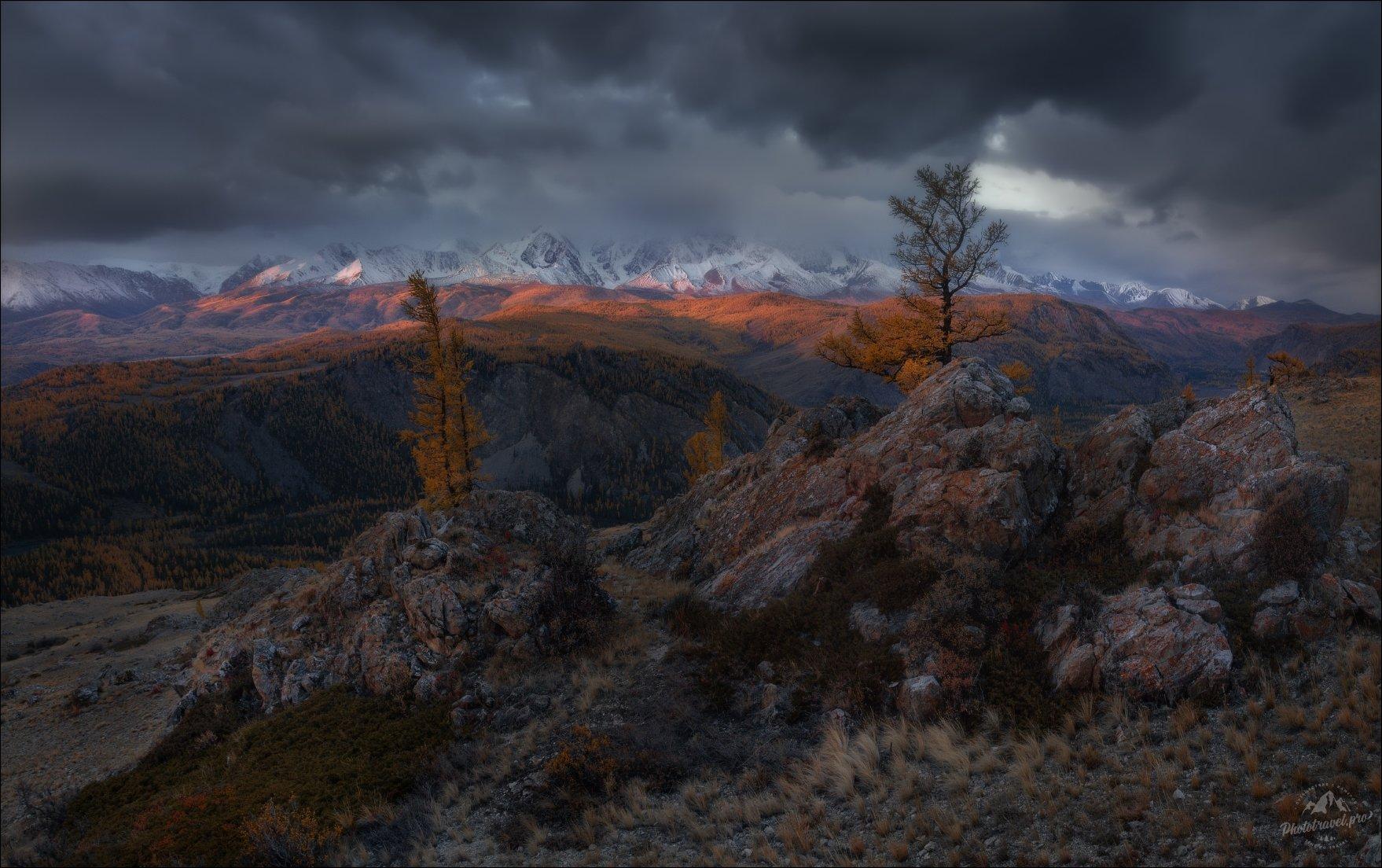 курайская степь, таджилу, тадилу, осень, северо-чуйский хребет, горный алтай, урочище, фототур, Влад Соколовский