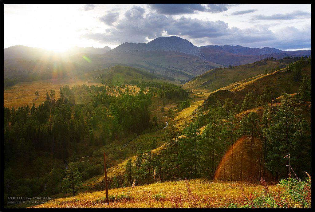 фотосафари, казахстан, вко, photo, safari, kazakhstan, nature, Vasca