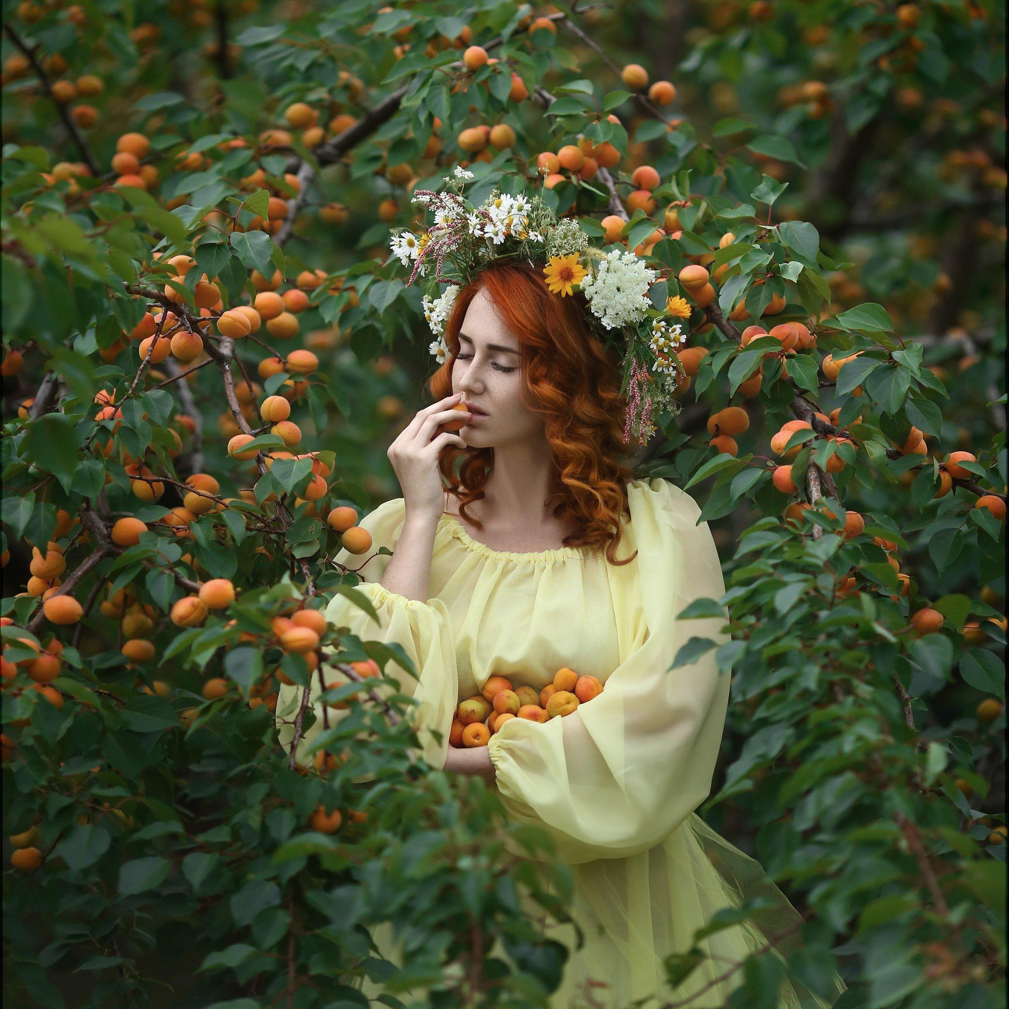 Apricots, абрикосы, желтое платье, рыжие волосы, девушка в венке, сборщица абрикос, рыжие локоны, абрикосы на ветке, Голубятникова Ирина
