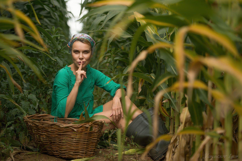 девушка, красивая, кукуруза , поле, селянка, Воронцов Игорь