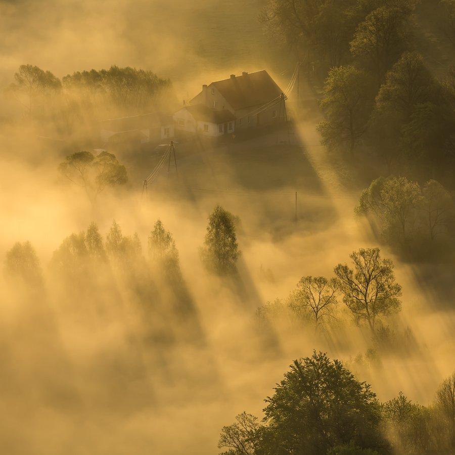 landscape,canon,mist,light,spring, Iza i Darek Mitręga