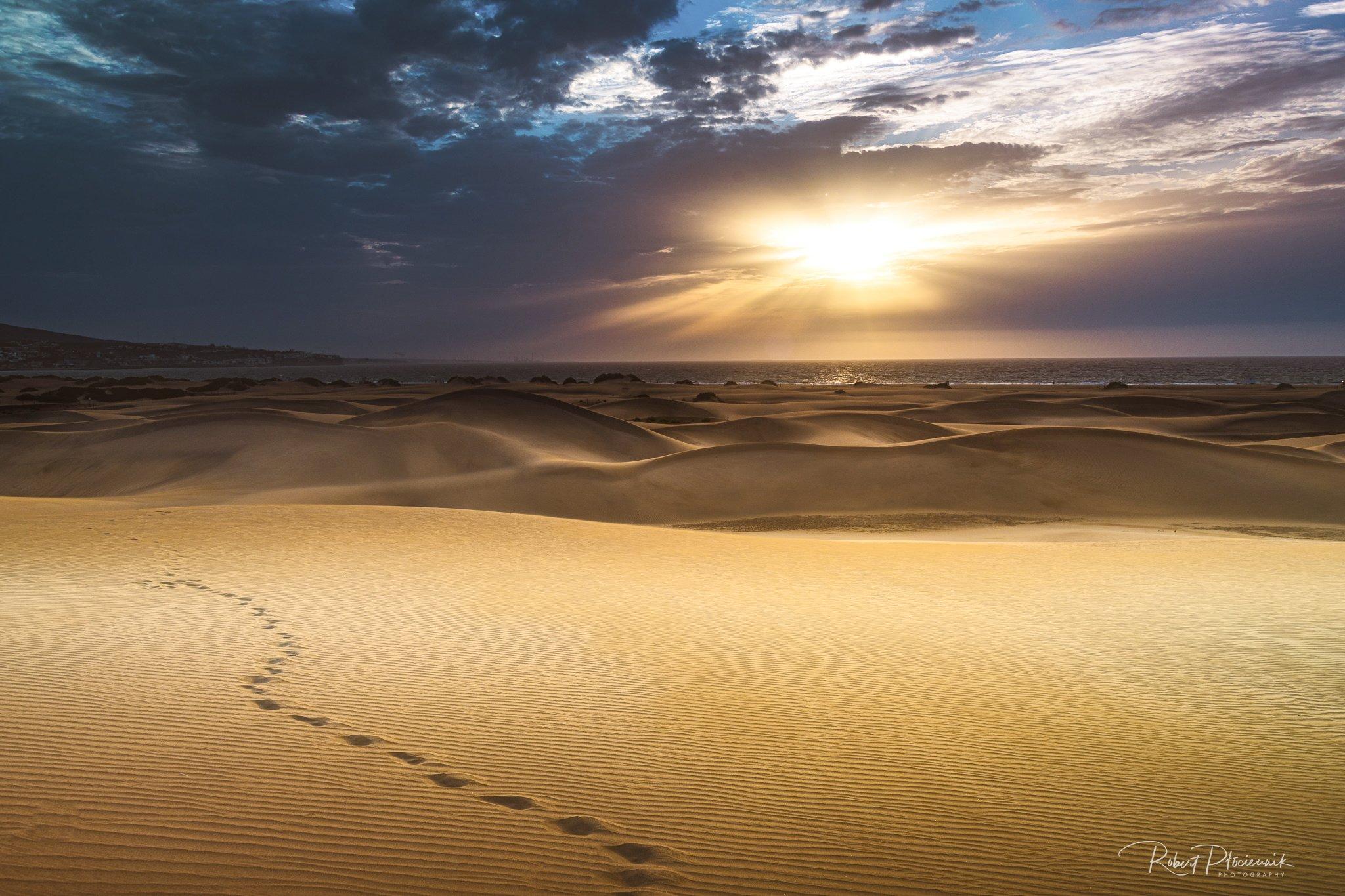 dunes, Płóciennik Robert