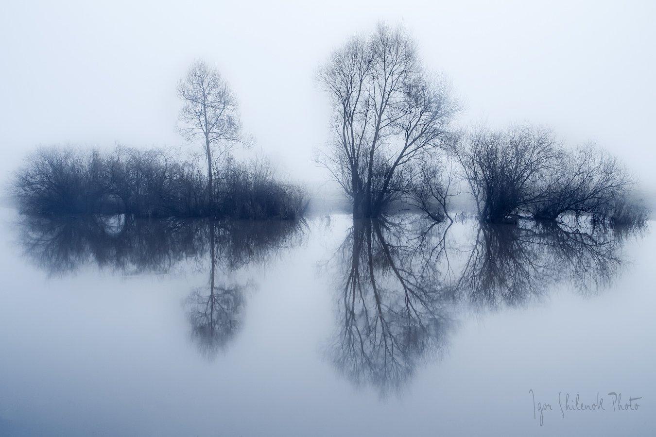 утро, туман, Игорь Шиленок