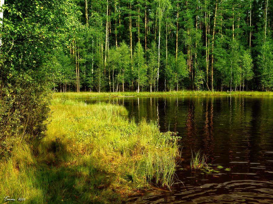 природа, лето, озеро, етти
