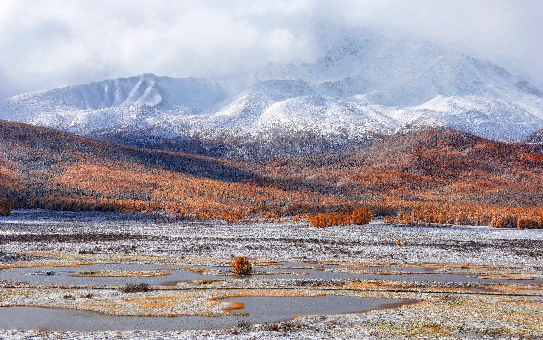 алтай, горный алтай, горы, сибирь, джангыскёль, плато ештыкёль, Хвостенко Галина