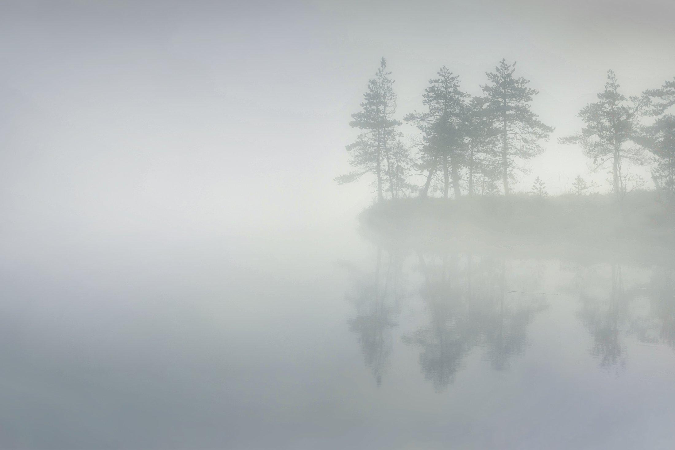 болото, кайф, рассвет ,север ,солнце, свет, закат, минимализм, отражение, фототур, Ващенков Павел