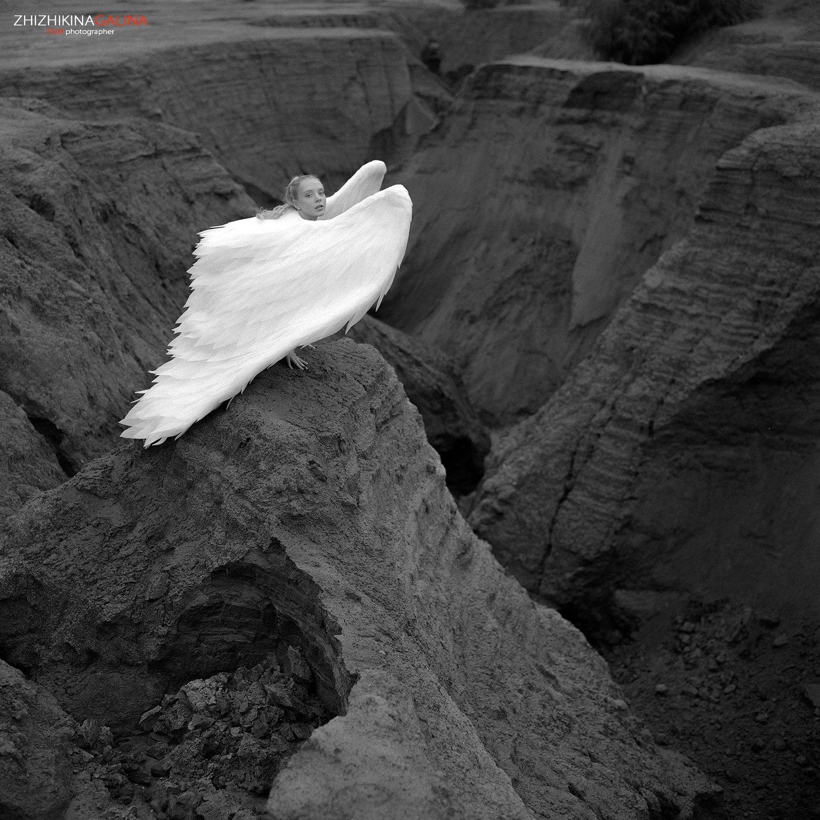ангел, крылья, девушка, портрет, чб, черно-белое, фото, фотография, пленка, фотограф, москва, angel, film, bw, girl, art, portrait, Галина Жижикина